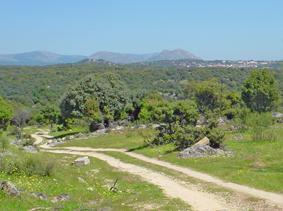 Fresnedillas desde el camino de San Bartolomé